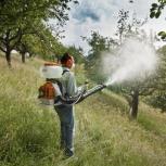 Опрыскивание плодовых деревьев, Саратов